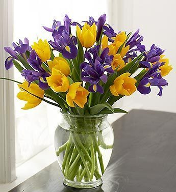 yellow-tulip-and-purple-iris-bouquet