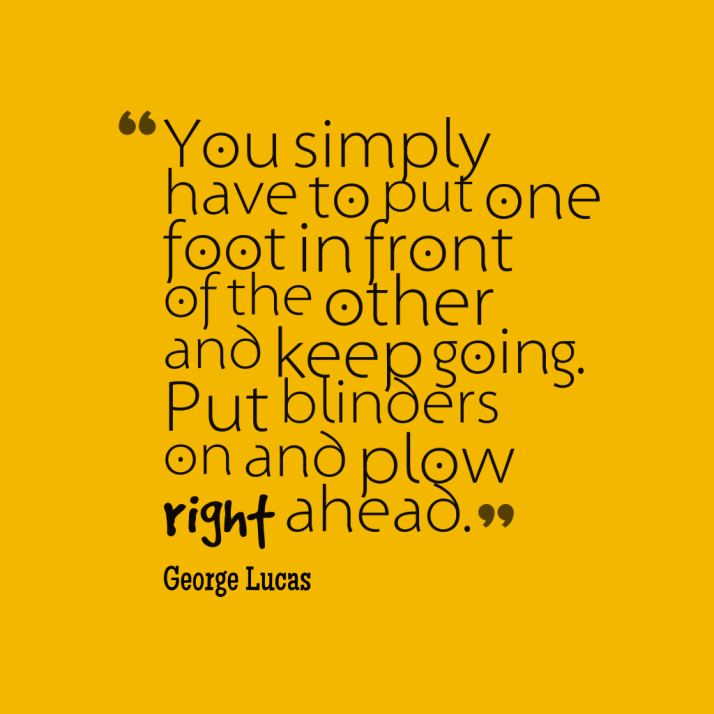 You-simply-have-to-put__quotes-by-George-Lucas-65-1024x1024